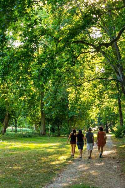 promenade dans le parc de châteauneuf-sur-Loire