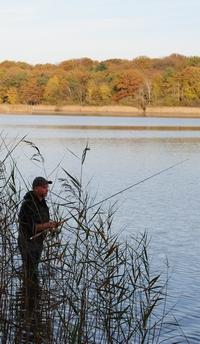 pêche à l'étang de la Vallée à Combreux