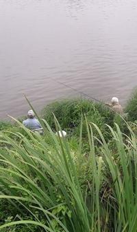 pêche en Loire à Châteauneuf-sur-Loire