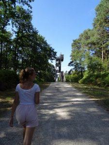 Le belvédère des Caillettes entre Nibelle et Seichebrières en Forêt d'Orléans