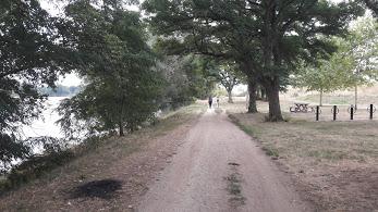 chemin de randonnée le long de la Loire à Jargeau