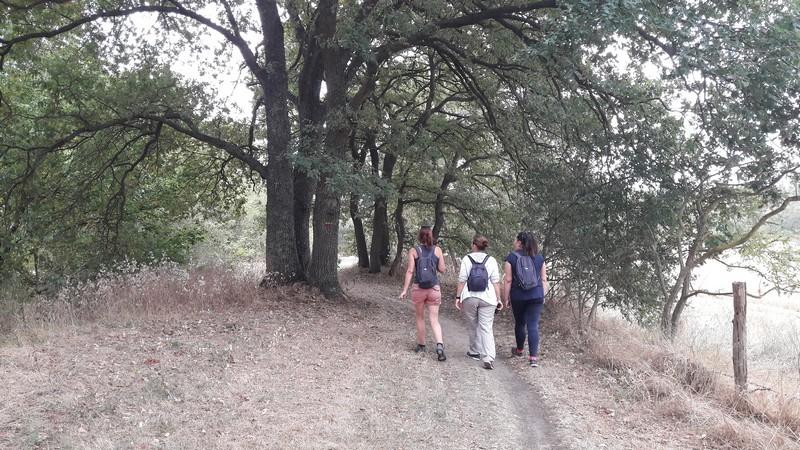randonnée des deux ponts à Jargeau