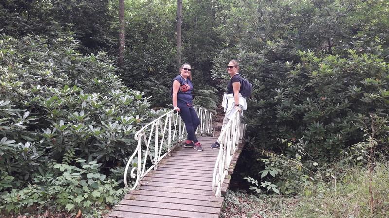 pont romantique dans le parc du château de Châteauneuf-sur-Loire