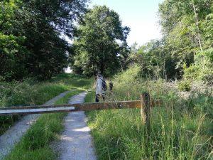 Randonnée en forêt d'Orléans