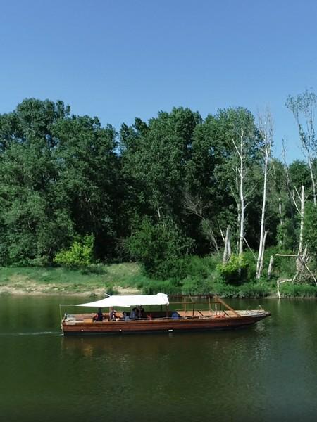 promenade en bateau sur la Loire à Sigloy
